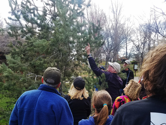 Rod leading a group on a tree walk