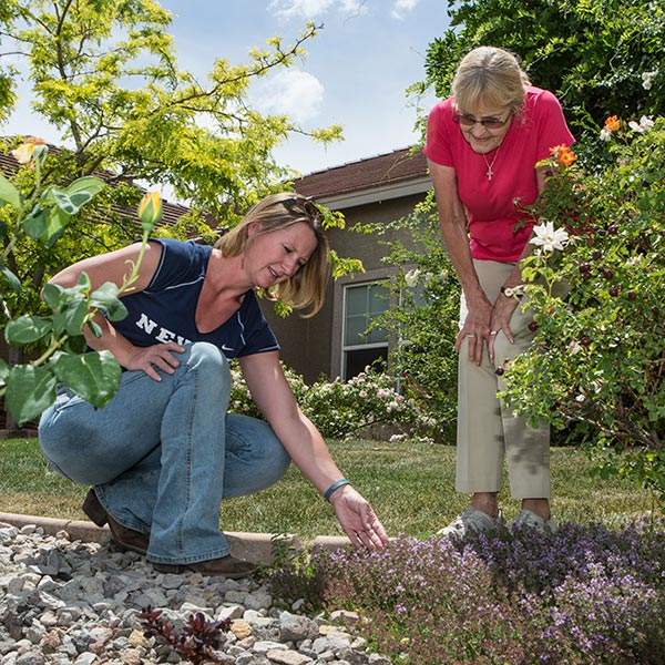 master gardener work with community