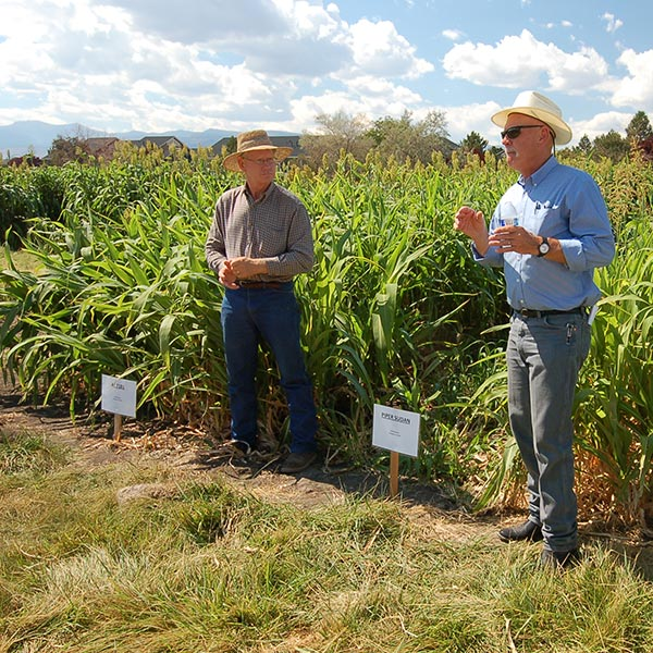 workshop on raising sorghum